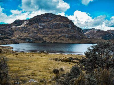 leyes del medioambiente colombia